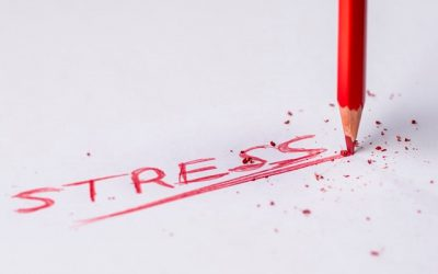 New research reveals causes and implications of SME workplace stress